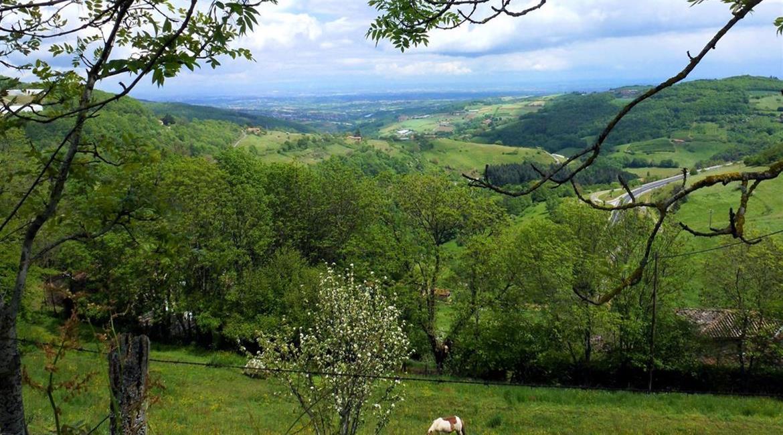 La communauté de commune des Monts du Lyonnais soutient la redynamisation du GR®7