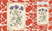 LIVRE :  Le petit livre des plantes sauvages