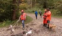 DÉBAT : Les chasseurs sont-ils trop dangereux pour les randonneurs ?
